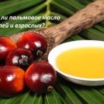 Вся правда о пользе и вреде пальмового масла для организма