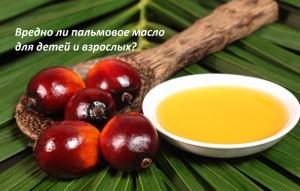 Пальмовое масло вред для организма взрослого и ребенка