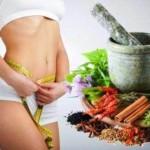 Рецепты травяных сборов для похудения и очищения организма