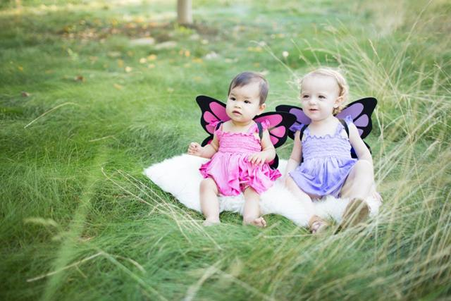 little-butterfly-fairies