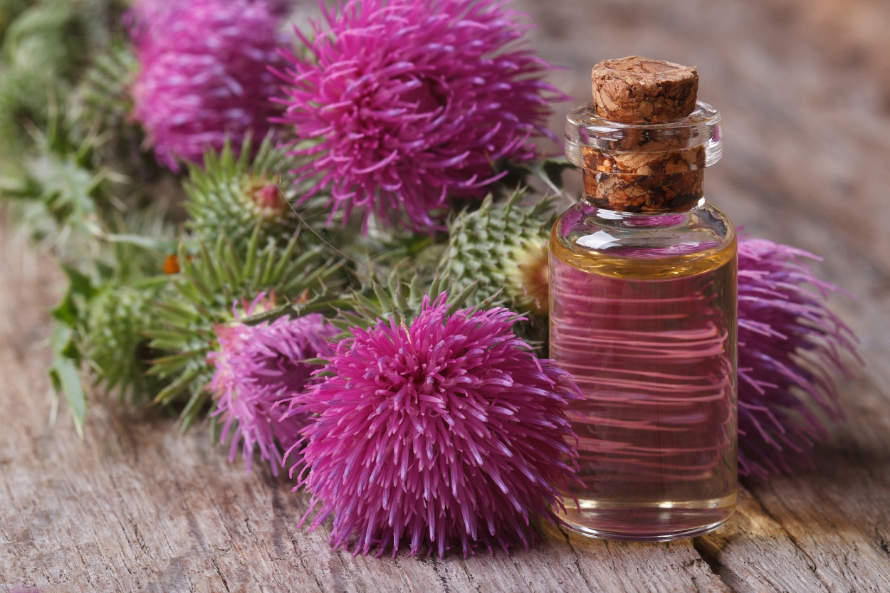 Лучшие спреи для роста волос – отзывы о покупных и рецепты сделанных своими руками